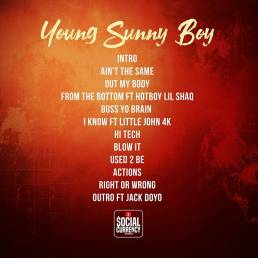 back of Young Sunny Boy album cover